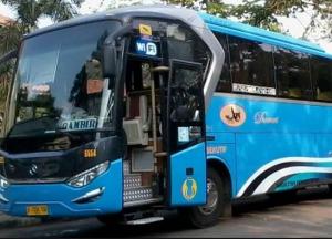 Bus Damri Terbaru