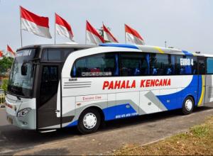 Bus Pahala Kencana Terbaru