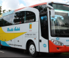 Bus Rosalia Indah Terbaru