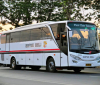 Bus Surya Bali Terbaru