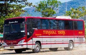 Armada Bus Tunggal Dara