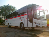Bus Primajas Terbaru