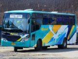 Armada Bus Rajawali