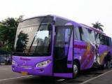 Bus Ramayana Terbaru
