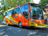 Bus Rosaliah Indah Lebaran