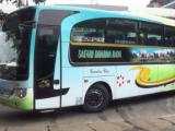 Bus Safari Dharma Raya Terbaru