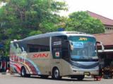 Model Bus San Terbaru