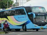 Tiket Bus Blue Star